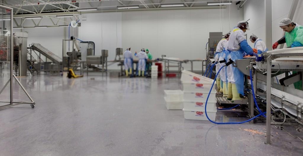 Get seamless floors with epoxy resins acrylicon ireland get seamless floors with epoxy resins solutioingenieria Images